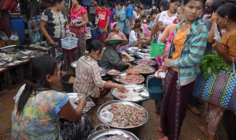 ダウェイの河畔マーケットを歩く Dawei riverside market