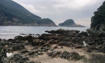 門川温泉心の杜と保井ケ浜キャンプ