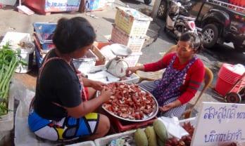 スラタニ  Surat Thani を歩く