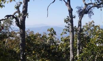 Pai の里山ハイキング