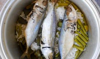 今日のご飯  ข้าววันนี้ with Salty Fish