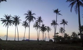 日の出 พระอาทิตย์ขึ้น