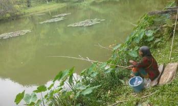 釣る人あり