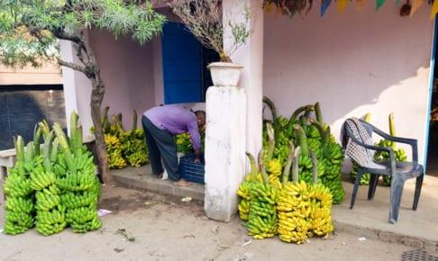 Bhubaneswar の両替所と安宿と蚊取り線香とバナナ