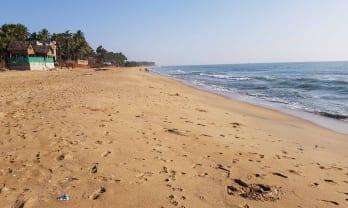 ポンディシェリではオーロビーチに泊まるとオーロビルにも行きやすい