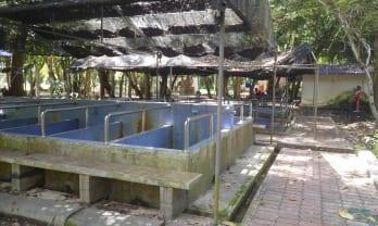 クルット温泉 スラタニ